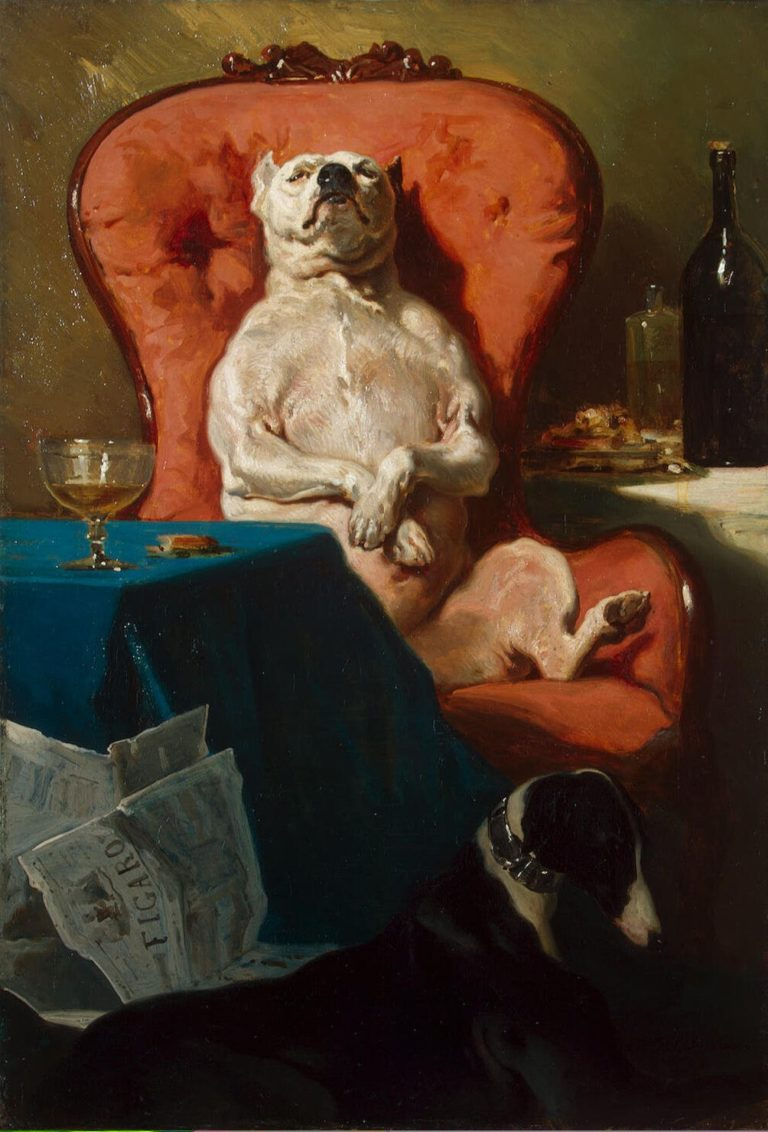 Pug Dog in an Armchair | Alfred Dedreux | oil painting