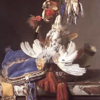 Aelst, Willem van