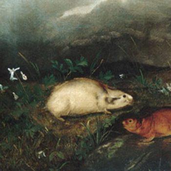 Audubon, John Woodhouse