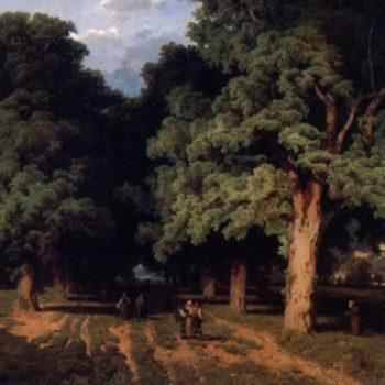 Wienwald, August Schaeffer von