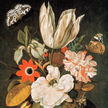 Dutch Flemish Still Life