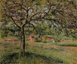 Apple Tree at Eragny 1884 | Camille Pissarro | oil painting