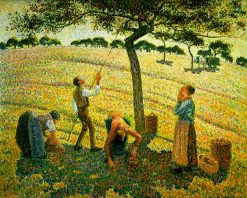 Apple Picking at Eragny-sur-Epte 1888 | Camille Pissarro | oil painting