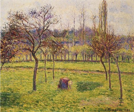 Apple Trees in a Field 1892 | Camille Pissarro | oil painting
