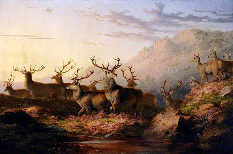 Stags on the Highlands | James Giles | oil painting