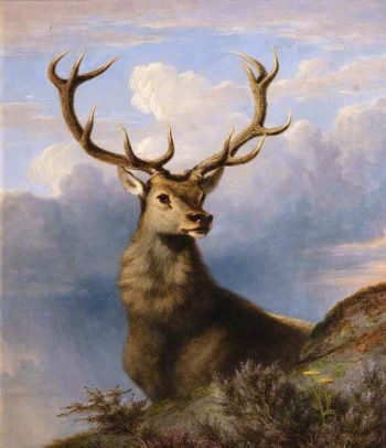 The Monarch of the Glen | James Giles | oil painting