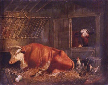 Hereford Cow | Edmund Ward Gill | oil painting