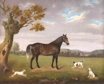 Horse in a Field with Three Dogs | Edmund Ward Gill | oil painting