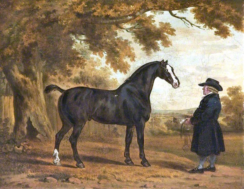 A Stallion with Its Groom | Thomas Gooch | oil painting