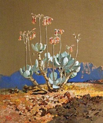 Cotyledon | Robert Gwelo Goodman | oil painting