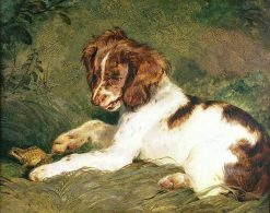 A Puppy Teasing a Frog | Sir Edwin Landseer | oil painting