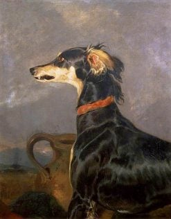 A Saluki Dog | Sir Edwin Landseer | oil painting