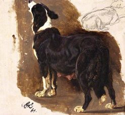 Collie Bitch | Sir Edwin Landseer | oil painting