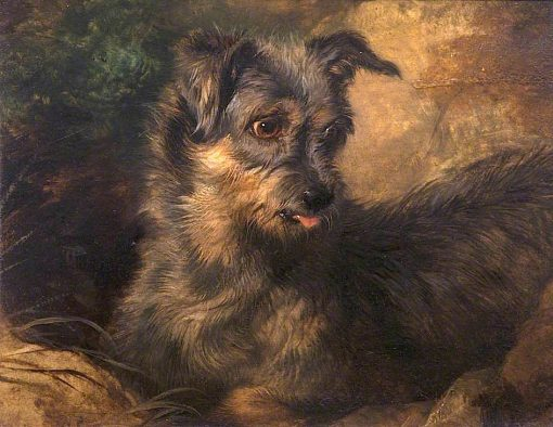 Ginger | Sir Edwin Landseer | oil painting