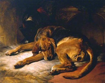 Sleeping Bloodhound | Sir Edwin Landseer | oil painting
