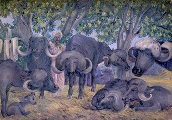 Buffalos of Bhownuggar. Kattiwah. India. Febr. 1879 | Marianne North | oil painting
