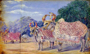 Decorated Oxen Drawing State Gun Carriages