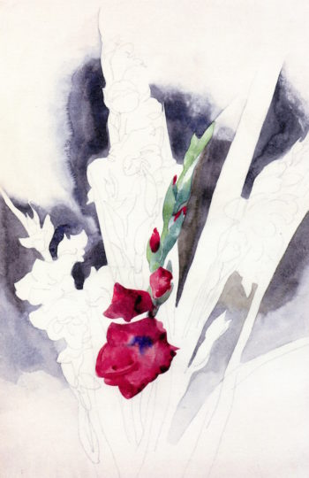 Gladioli | Charles Demuth | oil painting