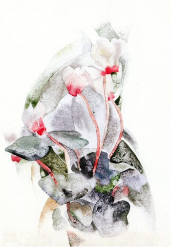 Cyclamen | Charles Demuth | oil painting