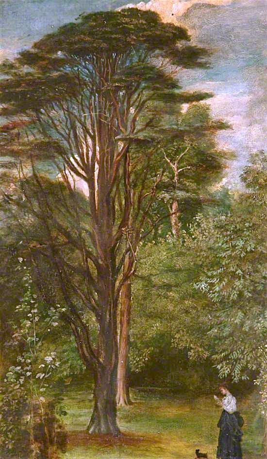 Cedar Tree | George Frederic Watts | oil painting