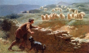 The Sheepstealer | Briton Riviere | oil painting