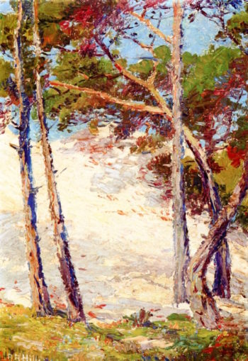 Pines near Pacific Grove | Anna Althea Hills | oil painting