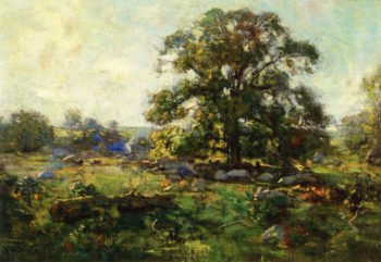 Oak Tree in Mystic   Charles Harold Davis   oil painting