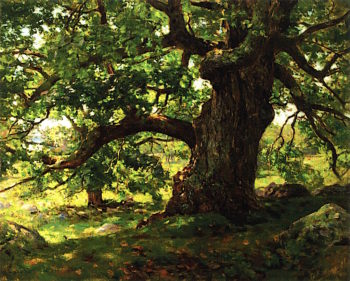 The Oak | Charles Harold Davis | oil painting