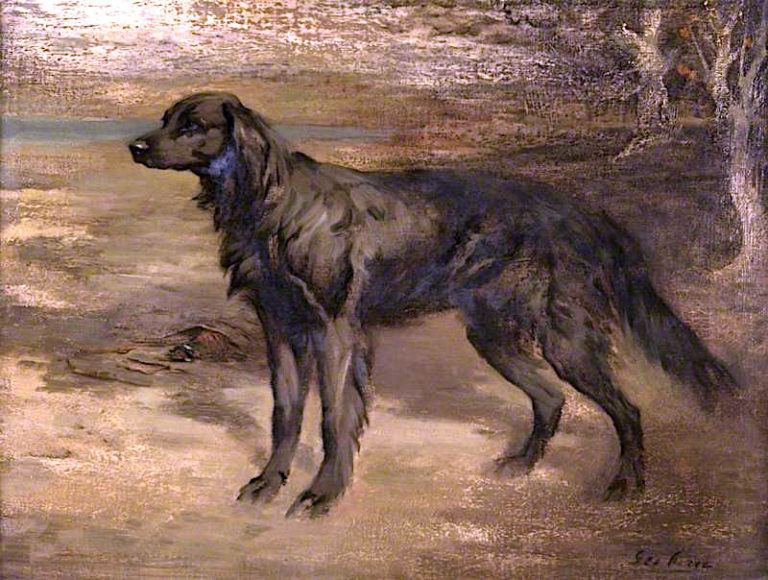 Black Setter | Sir George Pirie | oil painting