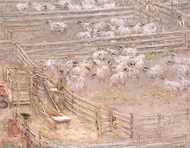 Sheep Fanks | Sir George Pirie | oil painting