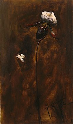 Study of two Flowers | John Pettie