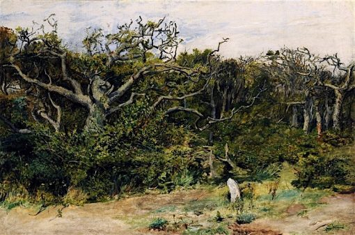The Edge of the Wood | John Pettie