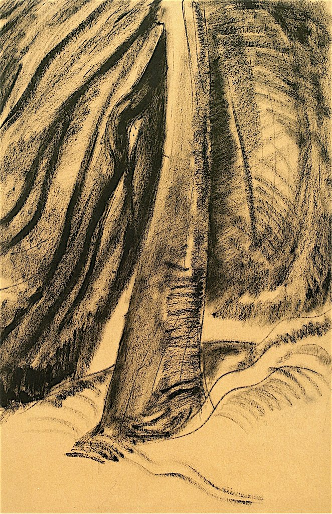 The Tree | Emily Carr | oil painting