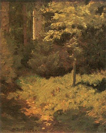 Tree Shadows | Ben Foster | oil painting