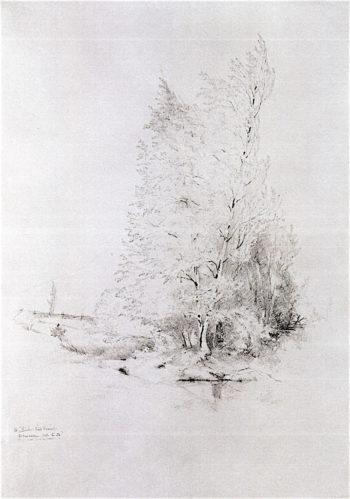 Trees at Shandeken   Jervis McEntee   oil painting