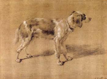 A Dog | Adriaen van de Velde | oil painting
