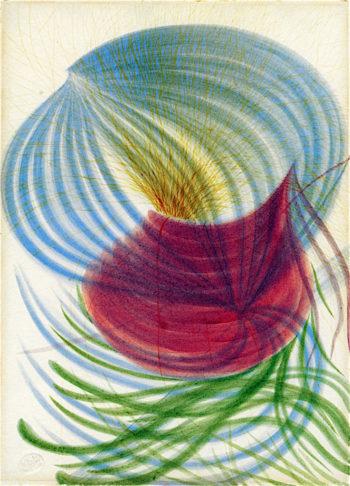 Flower of Warrant Houghton | Georgiana Houghton | oil painting