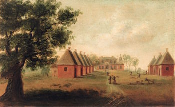 View of Mulberry