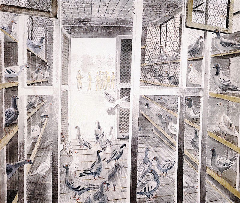 Corporal Steddiford;s Mobile Pigeon Loft