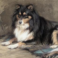 Alexander, Edwin John