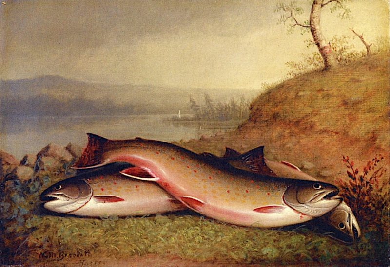 Trout | Walter M. Brackett | oil painting
