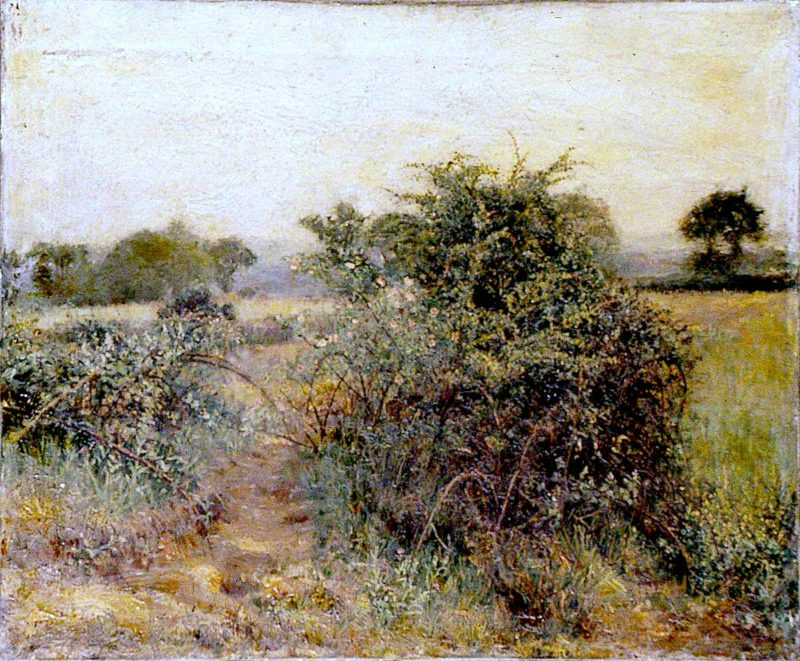 Landscape with Wild Roses | Woodbine Kendall Hinchliff | oil painting