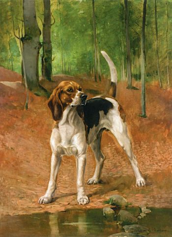 Portrait of a Beagle | Alexander Pope | oil painting