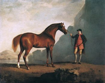 A Stallion Called Romulus