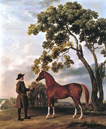 Lord Grosvenors Arabian with a Groom | George Stubbs | oil painting