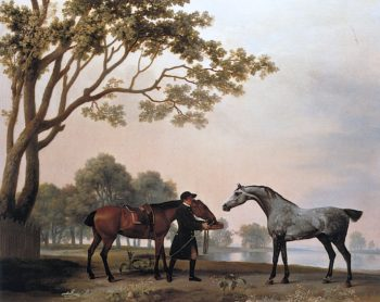 A Bay and a Grey Horse Fed by a Groom | George Stubbs | oil painting