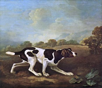 Pointer | George Stubbs | oil painting