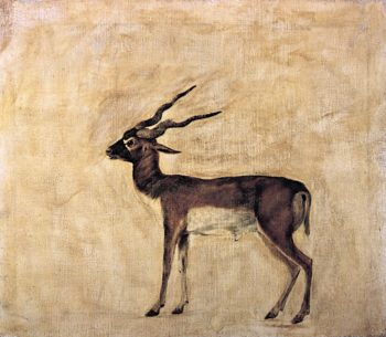 Blackbuck (unfinished) | George Stubbs | oil painting