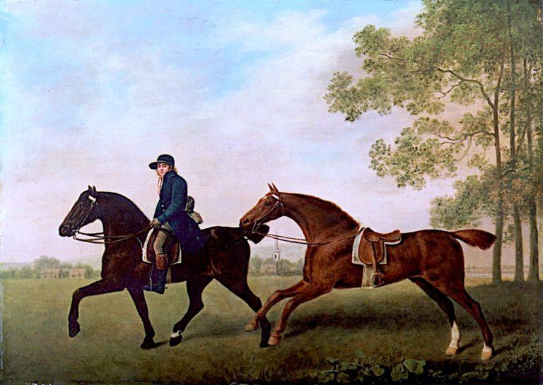 Two Saddled Horses