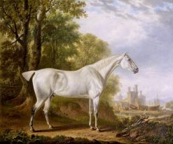 Billy a Favourite Horse of James Dearden